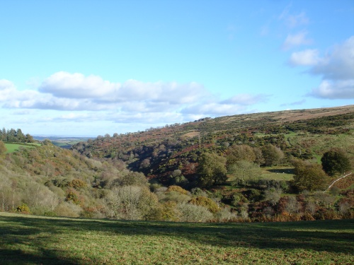 Belstone Cleave in autumn seen from Belstone
