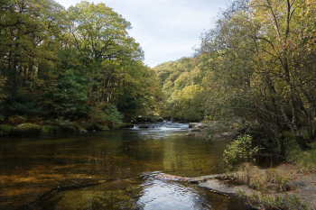 the River Dart on Dartmoor