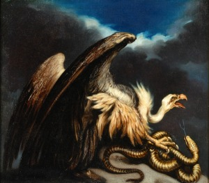 Vulture and snake