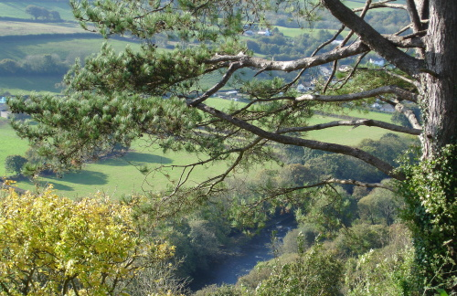 River Torridge seen from Castle Hill
